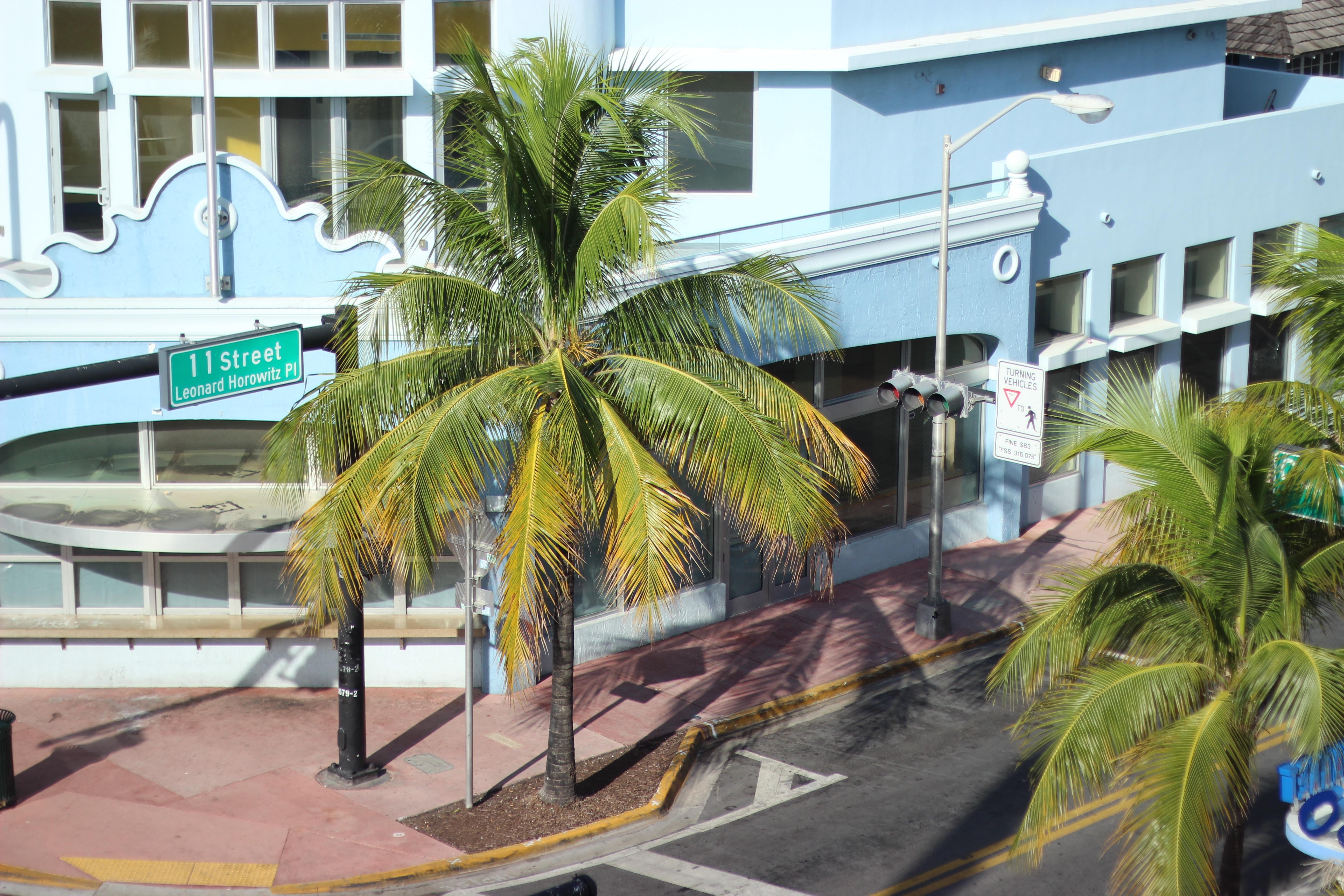 Miami Blog Ocean Drive